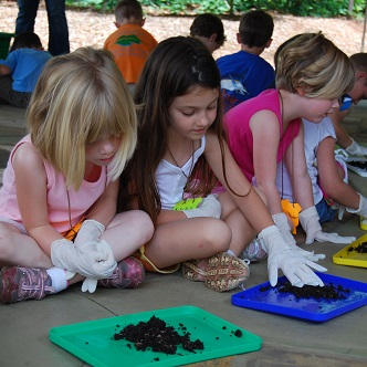 Image of preschool program. Children playing with worms.